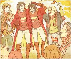 their quidditch hero by viria13
