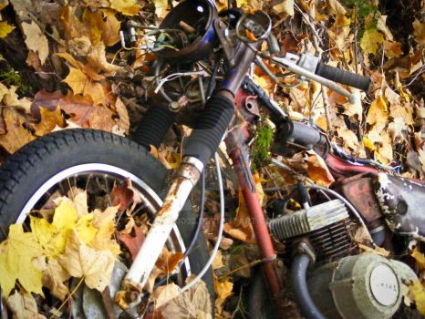 End of life for a bike by lita0032
