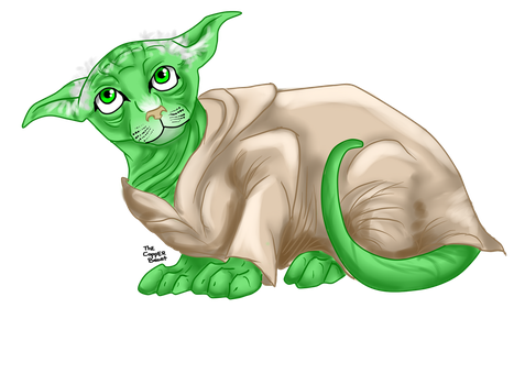 Yoda Cat by Thecopperbeast