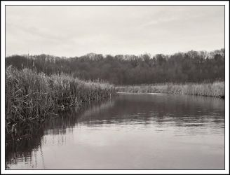 Quiet creek - Feb 2006 by pearwood