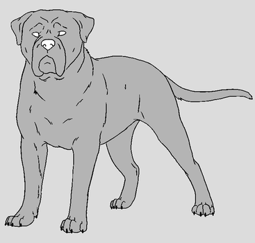Dog Template - Mastiff by NaruFreak123-Bases