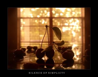 Silence Of Simplicity by implosin