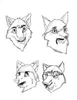 Beatles as Wolves -unfinished by Xmidnightblackwolfx