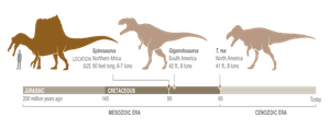 Chart - Top 3 Largest Predatory Dinosaurs by DYnoJackal19