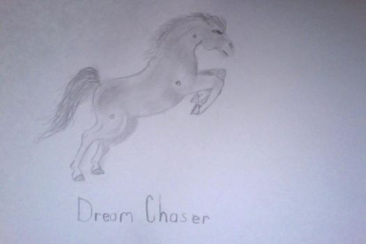Dream Chaser ID#65 by wild4horses