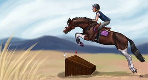 Cross country clinic by weezapony