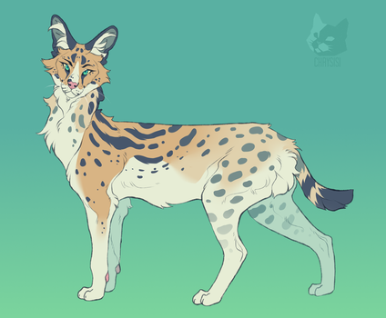 Serval by Chrysisi
