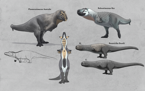 TMHOTW: New Brazillia Theropod Sample by vcubestudios