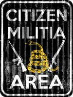 Citizen Militia-Constitutionalist by MouseDenton