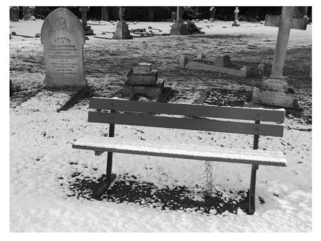 Too Cold To Sit On by fineartbyandrewdavid