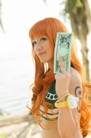 Nami's Beri Money, One Piece Cosplay by firecloak