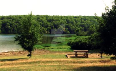 Horsehead Lake 2012 by Silver-Willow04