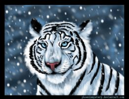 White tiger by PhoenixMystery