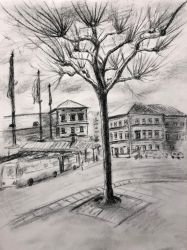 Mainz tree by akarudsan