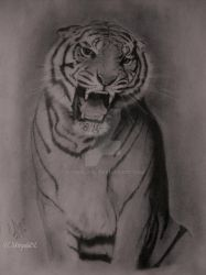 The Roaring Tiger by UthpalaDL