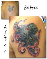 Octopus Cover-up by artist4life