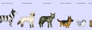 Lesser-known dog breeds by Kittensoft