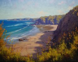 Central Coast NSW by artsaus