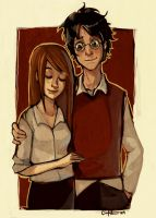 Harry and Ginny by CPatten