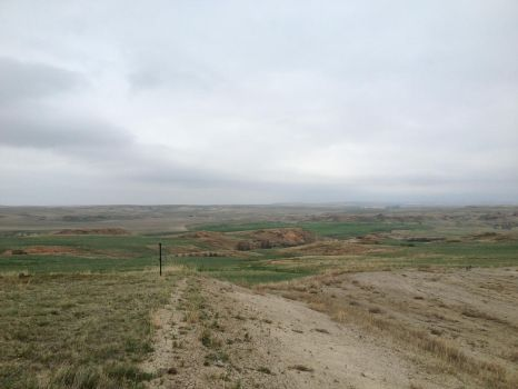 Rolling hills in Montana by Chocoppyica