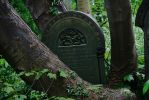 grave yard stock 17 by rustymermaid-stock