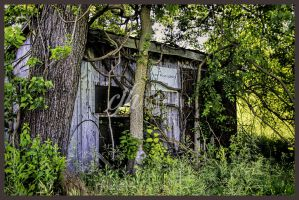 Plant Food Service Shack by cjheery