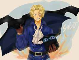 Sabo by HoshiDKCrow