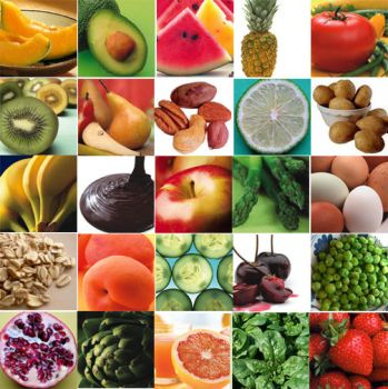 Food Grid of Awesome by zencat0
