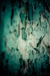 cracks in the wall by vennecto