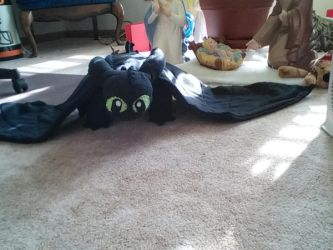 Toothless Plushie at the Nativity by Coraline12345