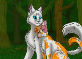 brightheart and cloudtail drawing by xxmidnight12xx