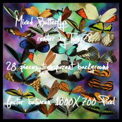 stock - pack butterfly by Twins72