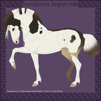 1040 Group Horse Import by Cloudrunner64