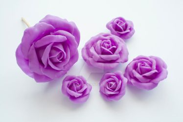 Purple Roses by li-sa