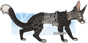 Cat adoptable   Auction   CLOSED by DaisiesAdopts