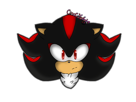 Gift- Shadow the Hedgehog by CindyHedgie