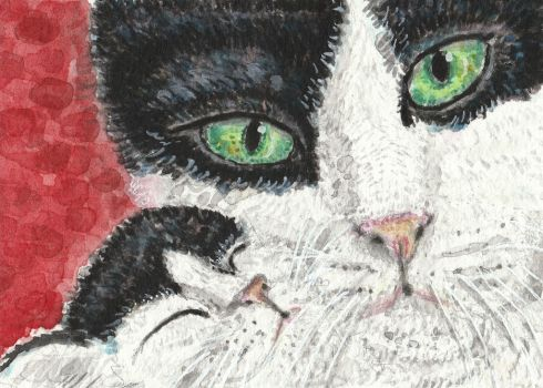 Black and white Mother cat  and baby  watercolor by tulipteardrops