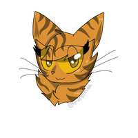 Mothwing Headshot by Fennevee