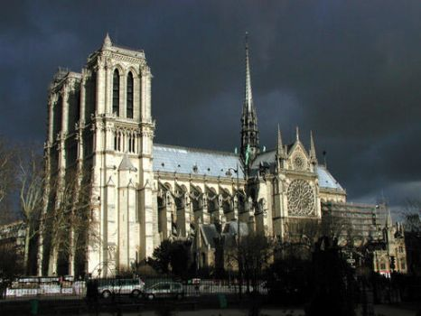 Notre Dame by telophase