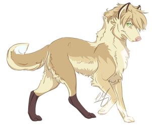 Ciaran - Young adult Ref by Emii-M