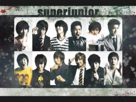 Super Junior by abstruseAMITY