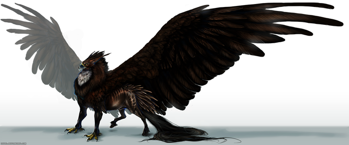 Hippogriff by Isvoc