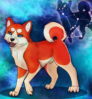 The Dog in our Stars by Crystalxhearts