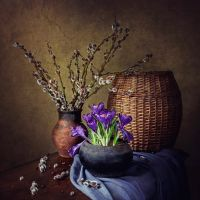 Spring in the old cast iron pot by Daykiney
