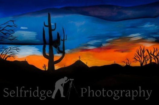 Saguaros in the Morning by spselfr