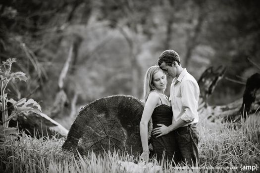 Engaement: Katie and Bryce 01 by panderbear