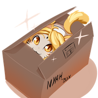 Catgirl In Box by drowtales