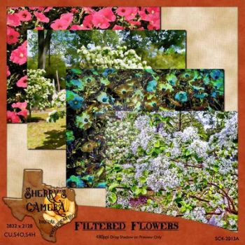 Filtered Flowers Photo Pack by Sherrys-Camera