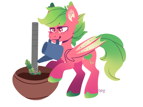 Sprout Shimmer Growing Some Dragon Fruit by SpindleSpice