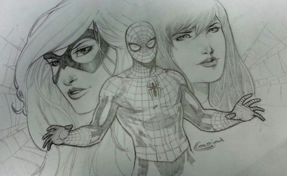 spiderman mary jane and black cat by Sajad126